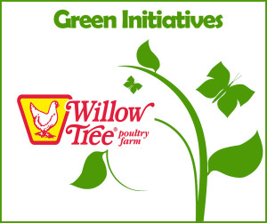 Green Initiatives FB